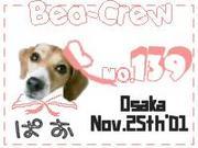 BeaCrew050520